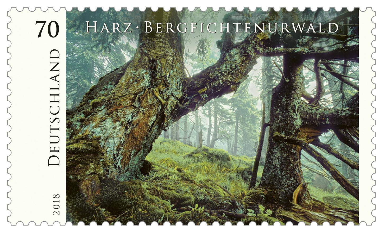 Bundesfinanzministerium Serie Wildes Deutschland Harz